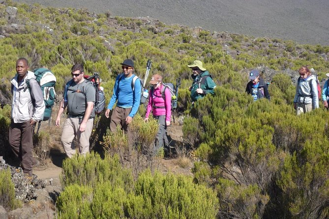 7 Day Kilimanjaro Ultimate Climbing Experience - Machame Route