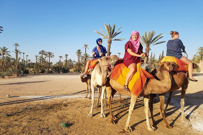 Majorelle Garden, Berber Museum and Camel Ride Tour from Marrakech photo 2