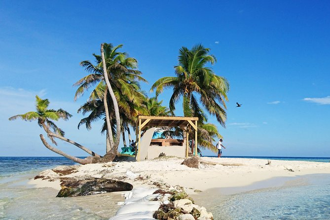 Snorkeling at Silk Caye with Turtles, Rays and Nurse Shark