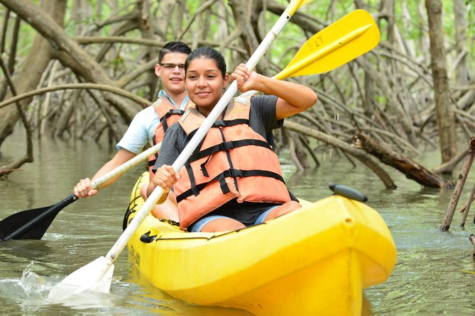 Damas Island Mangrove Kayaking Tour from Manuel Antonio photo 7