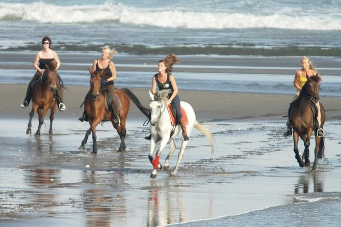 Bali Horse Riding Around The Black Sand Beach And The Two Amazing Waterfalls