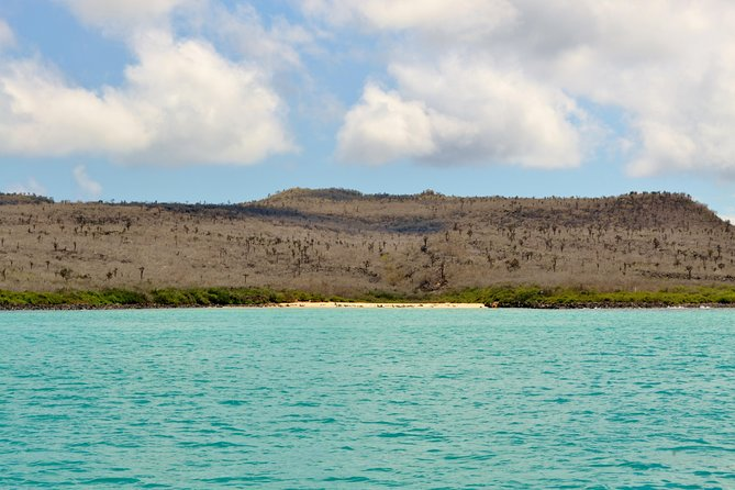 Santa Fe Galapagos Snorkeling Day Trip plus Playa Escondida - Includes Lunch photo 3