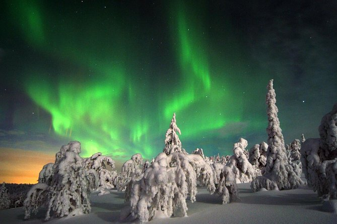Northern Lights Hunting Expedition