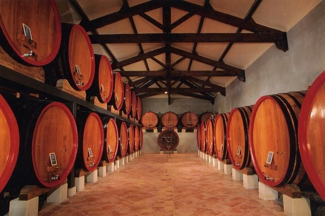 Culture and Wine in Chateauneuf du Pape Small-Group Day Trip