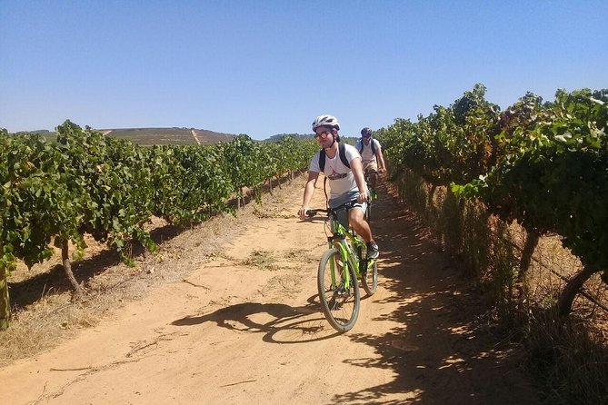 Stellenbosch Winelands Guided Half Day Cycle Tour photo 4