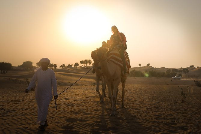 Abu Dhabi: Sunset Camel Trek and BBQ Dinner with Shows