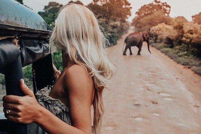 Minneriya national park tour from negombo with jeep safari