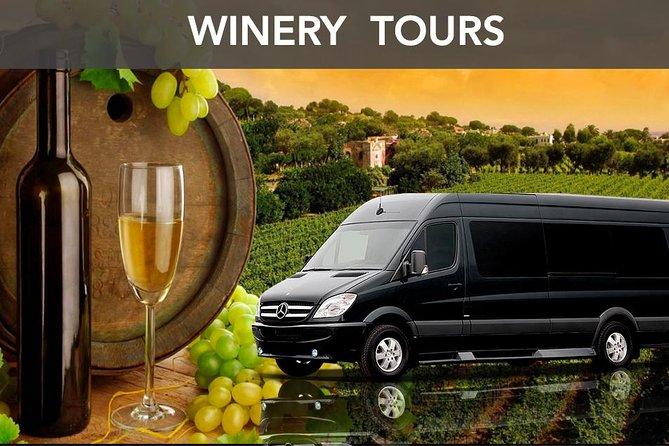 Wine & Spa Package Day Tour - Dompel uzelf onder in de rust en schoonheid van Chianti
