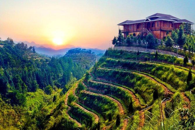 Private Day Tour: Anxi Tea Garden And Hongen Rock From Xiamen