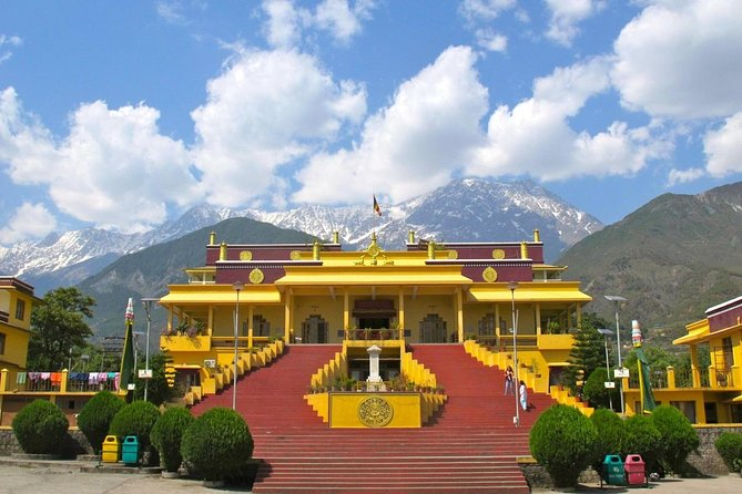Day Tour of Dharamshala, home to the Dalai Lama with Lunch