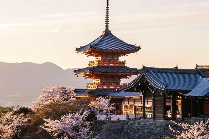 8 Hours Tour in Kyoto with a Local: Private & Personalized