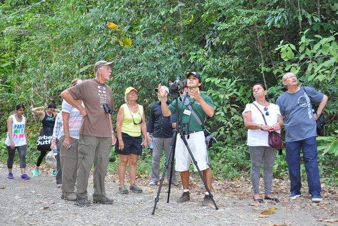 Manuel Antonio National Park Tour from Uvita