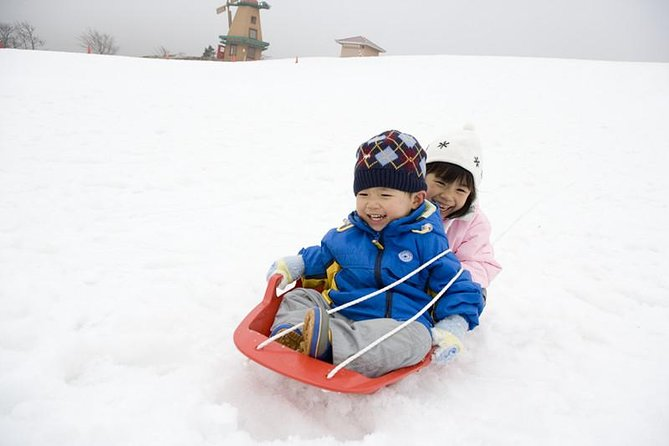 Winter Fun at Mt. Fuji: Fujiyama Snow Resort Yeti & Strawberry Picking photo 1