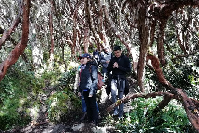 Cajas National Park Full Day Tour from Cuenca photo 1