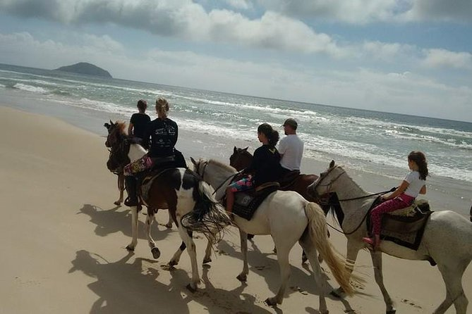 Horseback Riding on the Beach photo 2
