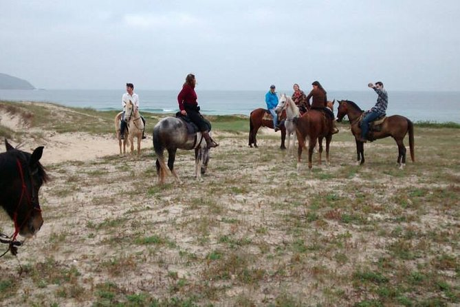 Horseback Riding on the Beach photo 8