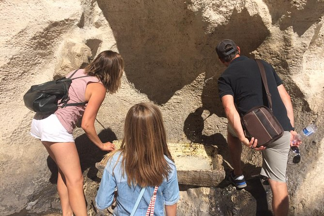 Sightseeing Walking Tour of Rome By Night: Trevi Fountain & Other Highlights