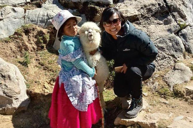 Excursión privada de un día desde La Paz, Bolivia con recogida en el hotel