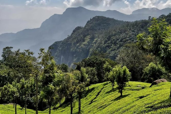 Tour to Coonoor from Coimbatore