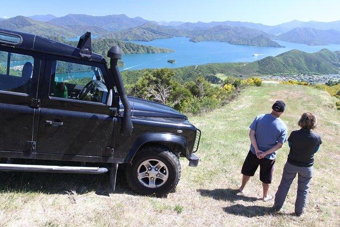 Excursion sur le rivage de Picton: visite en 4x4 de Gondola Hill