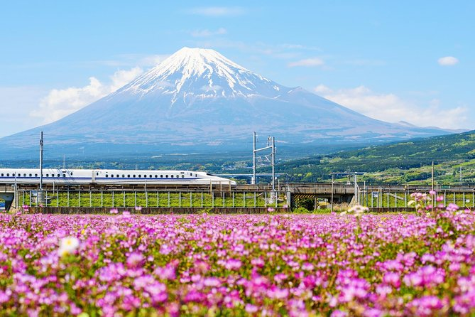Bullet Train and Mt. Fuji Famous Food Tour