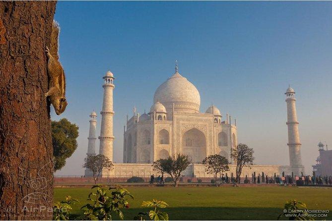 Same day Taj Mahal Tour from Mumbai by Flight