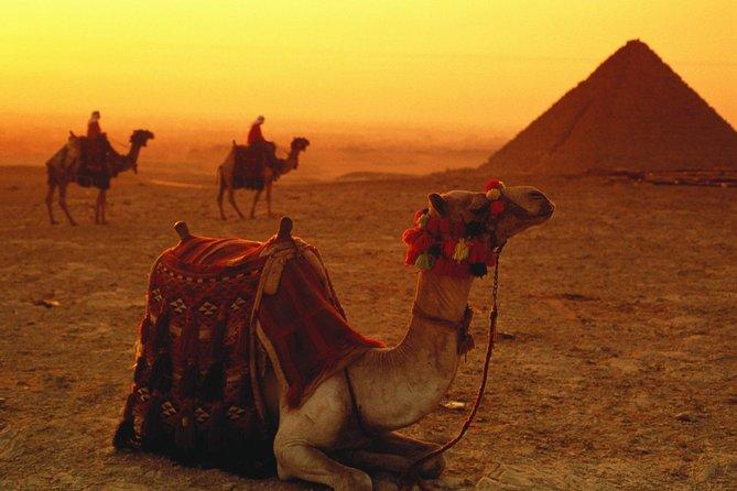 Sunrise or Sunset Camel Ride around the Giza Pyramids Desert