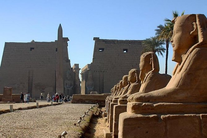 Luxor Private Guided Day Tour from Cairo by Flight Included Lunch