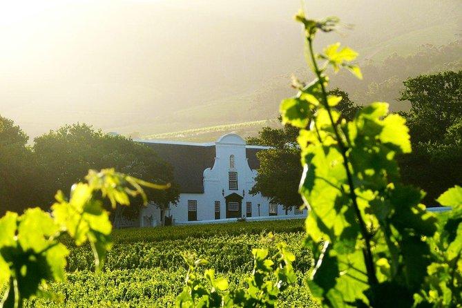 VIP Viator: vol en hélicoptère avec repas et dégustation de vins à Cape Winelands au départ du Cap