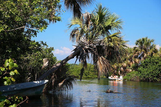 Oaxacan Coast Adventure (Ventanilla, Mazunte, Zipolite, & Puerto Angel)