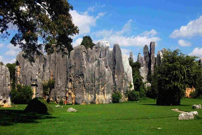 Private Full-Day Stone Forest and Jiuxiang Cave Tour from Kunming