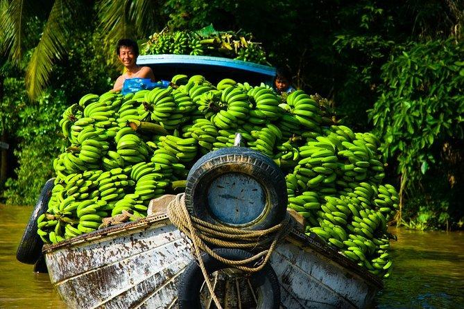 Viagem de dia inteiro privada de luxo Cu Cu e Delta do Mekong saindo da cidade de Hcm