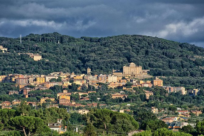 Rome Frascati Wine Tour with Lunch and Wine Tastings