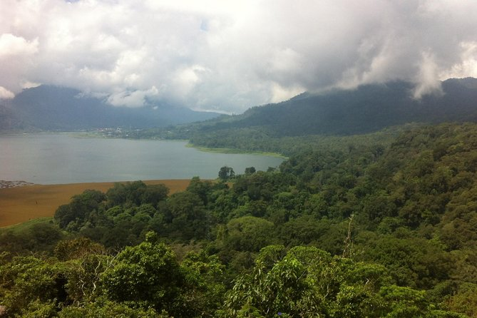 Private Jungle Trekking Tour with Tamblingan Lake Canoeing