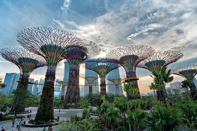 Private Singapore Night Tour with Gardens by the Bay,Trishaw Ride & River Cruise