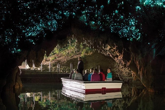 Caves and Kiwi: Waitomo Glowworm Caves, Ruakuri Caves, and Otorohanga Kiwi House