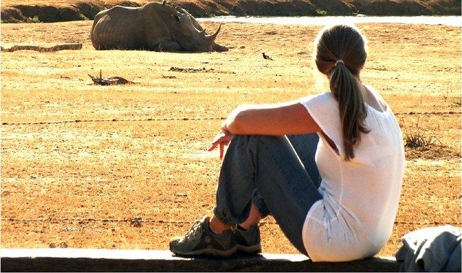 Hlane - White Rhino sighting