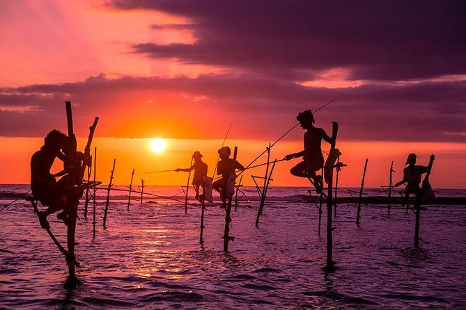 Galle Day Tour with Stilt Fishing Experience from Colombo