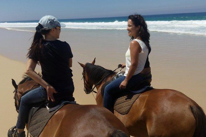 Horse Riding Tour on the Beach Lisbon region