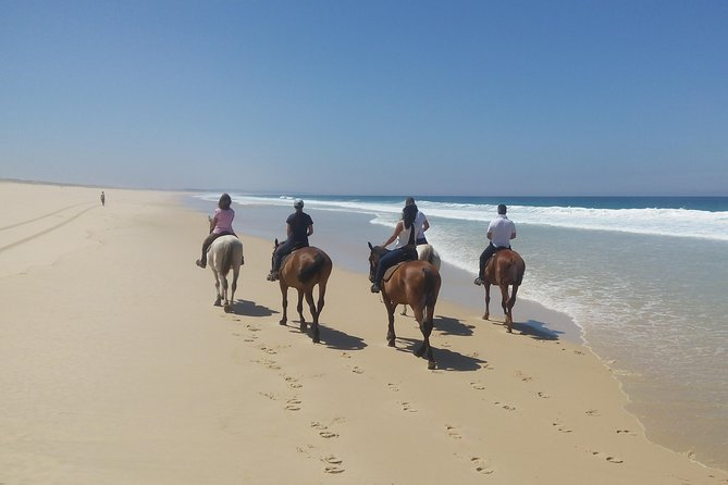 Horse Riding Tour on the Beach photo 9