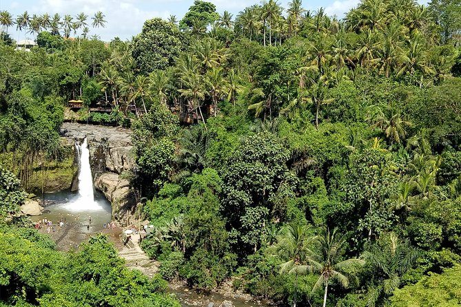 Bali Private Tour: Waterfall, Monkey forest and Tanah lot sunset Tour