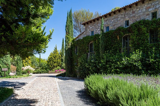 Vineyards, Wine Tasting and Pairing in San Miguel