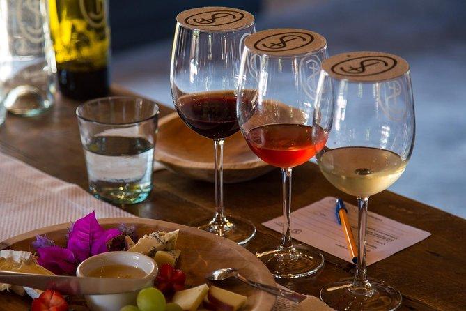 Wine tasting and pairing.