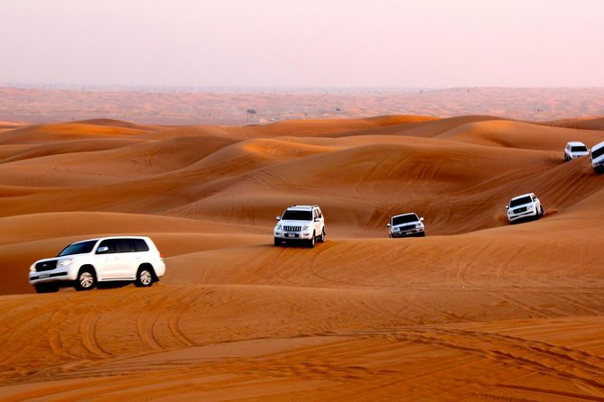 Dubai Desert Safari with BBQ Dinner, Sand Boarding, Camel Ride & 3 Live Shows