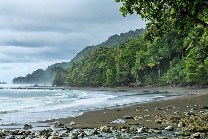 Corcovado National Park One Day Tour