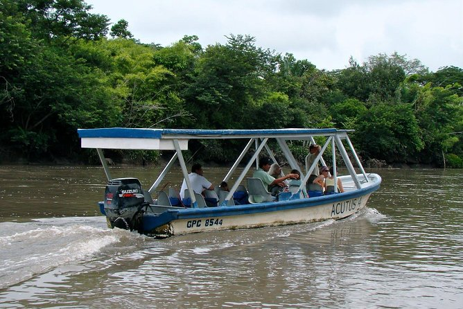 Private River Boat Tour at Palo Verde National Park - Wild life observation