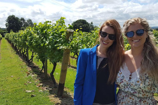 English Wine Tour to Sussex from London