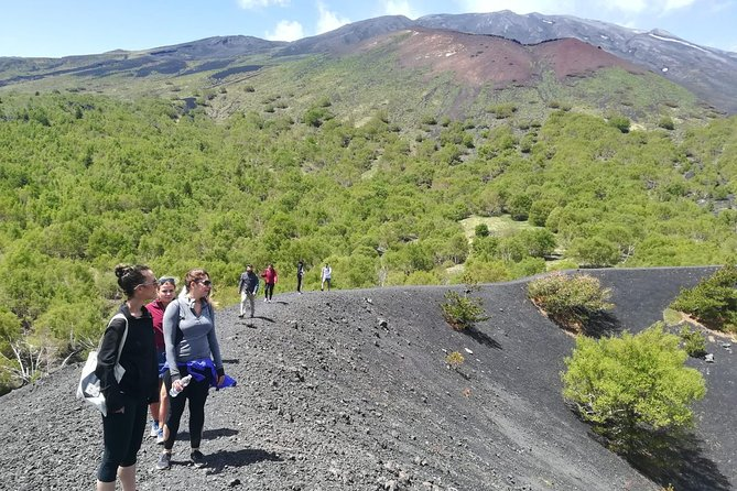 Mount Etna Half-Day Tour - Small Groups From Taormina