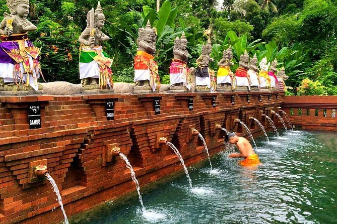 Shore Excursion : Private Tours To Ubud Art village And Surrounding Area