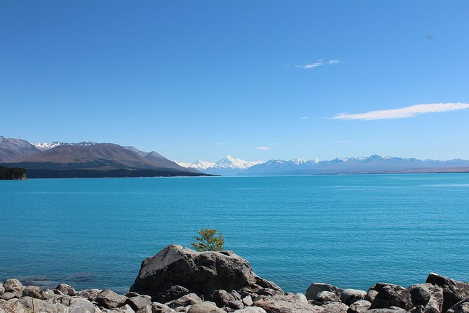 Lake Tekapo and Lake Pukaki Day Tour